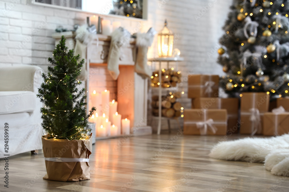 Fototapeta Potted Christmas tree with fairy lights in stylish room interior