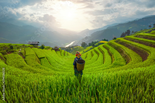 Photo sur Toile Les champs de riz Tribal woman, farmer, with paddy rice terraces, agricultural fields in countryside of Mu Cang Chai, Yen Bai, mountain hills valley in South East Asia, Vietnam. Nature landscape background.