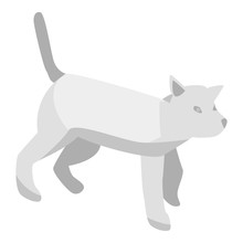 Grey Cat Icon. Isometric Of Grey Cat Vector Icon For Web Design Isolated On White Background