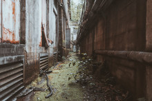 Passage At An Abandoned Building
