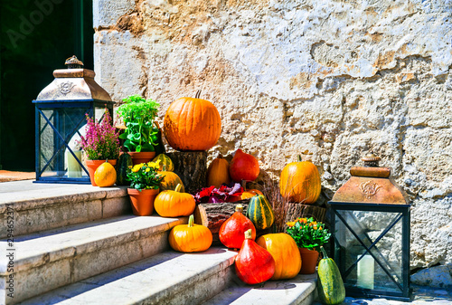 Autumn decoration with pumpkins. still life outdoor, ideas for garden