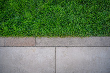 Top View Of Green Grass Texture With Cement Sidewalk.