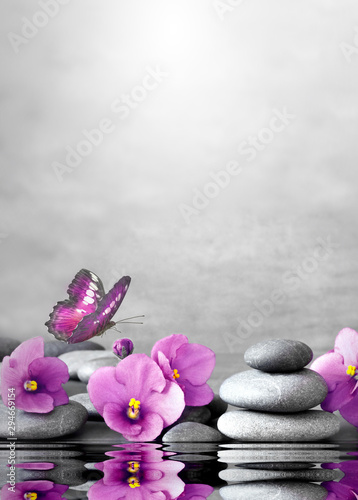 Poster Spa Beautiful flower, butterfly and stone zen spa on grey background.