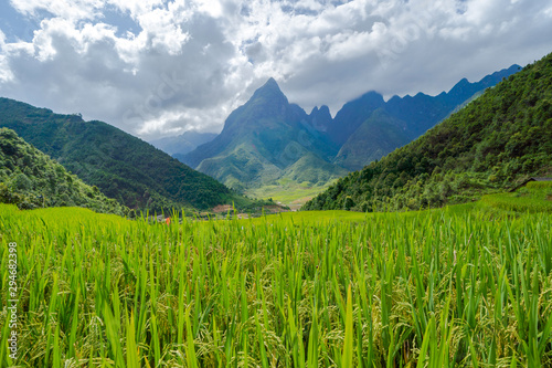 Foto auf Gartenposter Reisfelder Fansipan mountain hills valley on summer with paddy rice terraces, green agricultural fields in countryside or rural area in travel trip and holidays vacation concept, Sapa, Vietnam. Nature landscape.