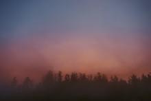 Sunrise Tree Line Fog