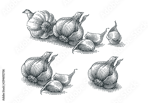 Garlic composition. Hand drawn engraving style illustrations. Wallpaper Mural