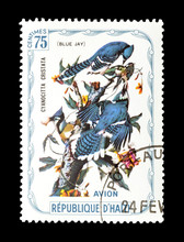 Cancelled Postage Stamp Printed By Haiti, That Shows Blue Jay Bird, Circa 1975.