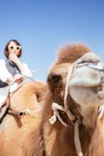 A Lively Girl Rides A Camel