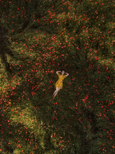 Overhead View Of Woman Lying on Green Field With Flowers