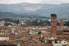 Guinigi Tower In Lucca City