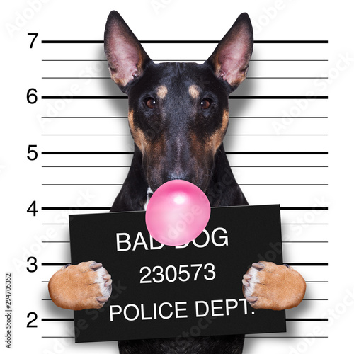Tuinposter Crazy dog mugshot dog at police station