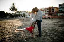 Couple Petting Dog On Beach At...