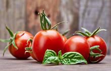 Fresh Tomatoes With Leaf Basil...