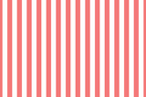 Vector seamless vertical stripes pattern, pink and white. Simple background - 294723971