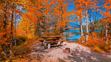 Lakeside Picnic Area In Autumn...