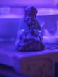 canvas print picture - neon figure