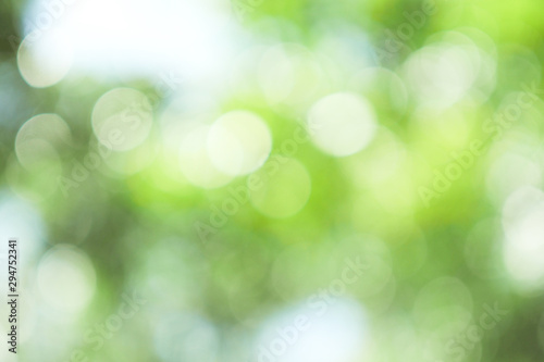 Photo sur Aluminium Vert chaux Abstract green bokeh out of focus background from tree in nature