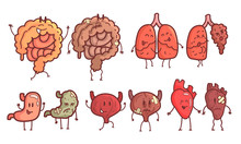 Healthy And Unhealthy Human Internal Organs Cartoon Character Set, Bladder, Heart, Lungs, Intestines, Stomach Vector Illustration