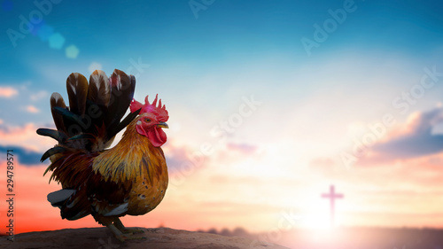 Photo  Peter denies Jesus concept: rooster on blurred beautiful sunrise sky with cross