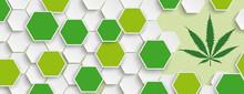 Hexagon Structure Hemp Leaf He...