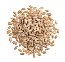 Peeled Sunflower Seeds Isolated On White Background With Clipping Path, Top View
