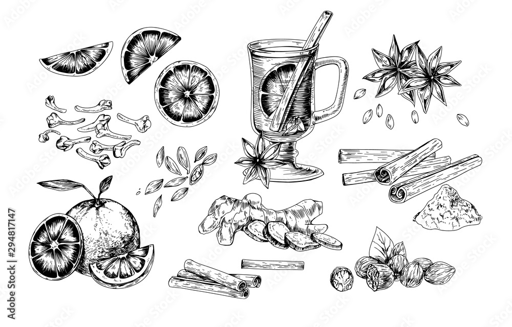 Obraz Mulled wine and spices realistic vector illustrations set. Flavoring seeds and herbs hand drawn isolated cliparts pack. Winter traditional hot drink ingredients. Ginger root, oranges, star anise. fototapeta, plakat