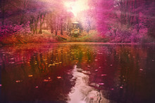 River In The Autumn Forest At ...