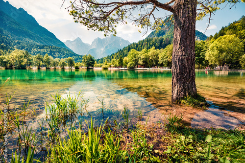Obraz Perfect morning view of Jasna lake. Fabulous summer scene of Julian Alps, Gozd Martuljek location, Slovenia, Europe. Wonderful landscape of Triglav National Park. Traveling concept background. - fototapety do salonu