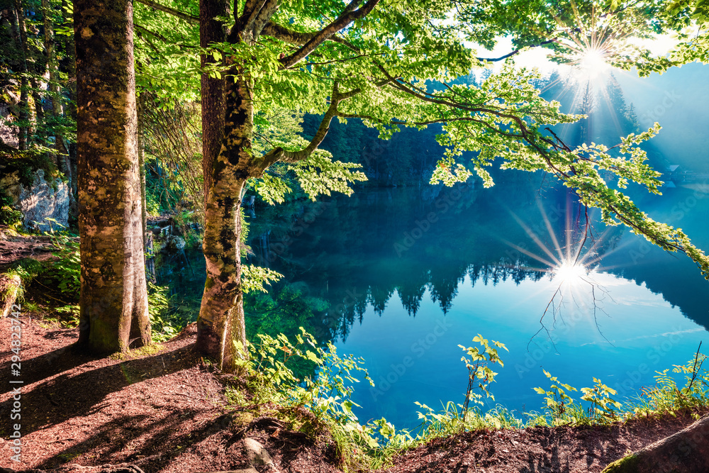 Fototapety, obrazy: Stunning summer view of Fusine lake. First rays of the sun sparkle through the green leaves of the old forest. Splendid morning scene of Julian Alps, Province of Udine, Italy, Europe.