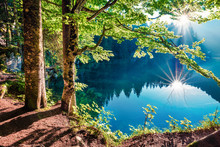 Stunning Summer View Of Fusine Lake. First Rays Of The Sun Sparkle Through The Green Leaves Of The Old Forest. Splendid Morning Scene Of Julian Alps, Province Of Udine, Italy, Europe.