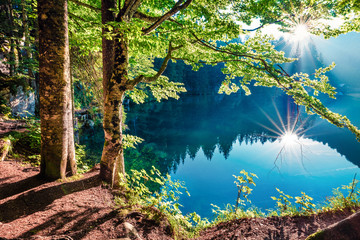 Fototapeta Krajobraz Stunning summer view of Fusine lake. First rays of the sun sparkle through the green leaves of the old forest. Splendid morning scene of Julian Alps, Province of Udine, Italy, Europe.