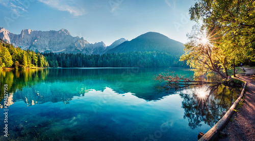 Fotobehang Bomen Colorful summer view of Fusine lake. Bright morning scene of Julian Alps with Mangart peak on background, Province of Udine, Italy, Europe. Traveling concept background.