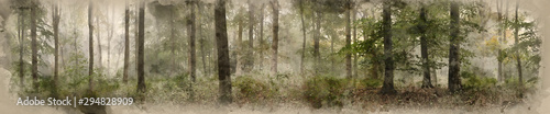 Fotografia Digital watercolor painting of Panorama landscape image of Wendover Woods on foggy Autumn Morning