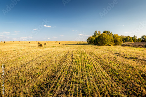 Scene with haystacks on the field in autumn season with cloudy sky Wallpaper Mural