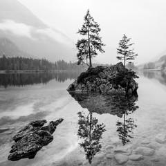 Fototapeta Czarno-biały Trees on a rock island in BW - Lake Hintersee, Bavaria, Germany