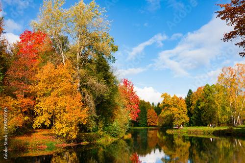 Montage in der Fensternische Honig Autumn foliage in Pavlovsky park, Pavlovsk, Saint Petersburg