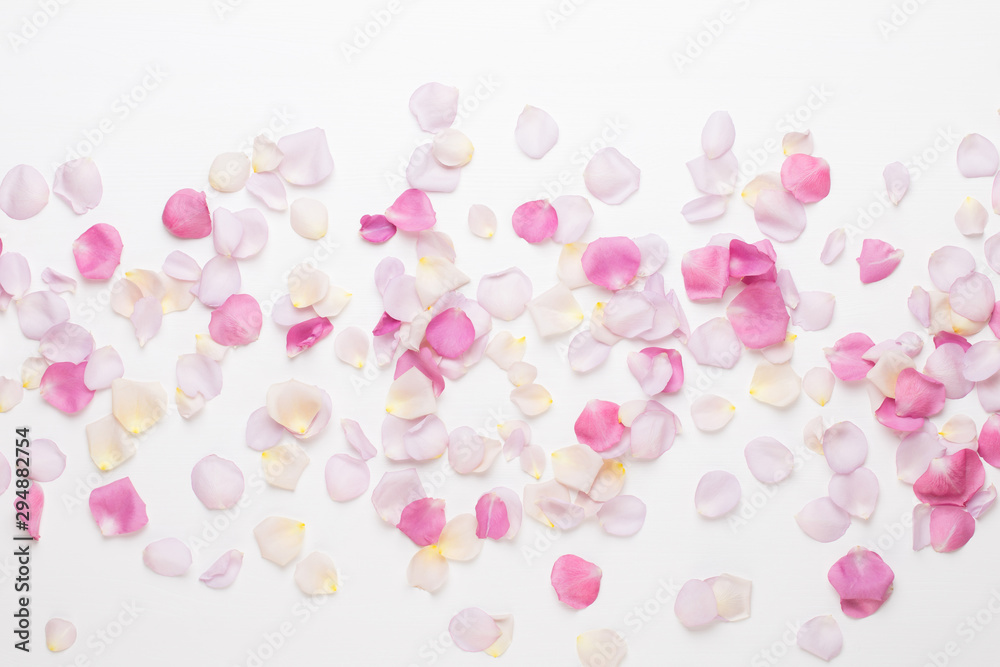 Fototapeta Pink rose flowers petals on white background. Flat lay, top view, copy space.
