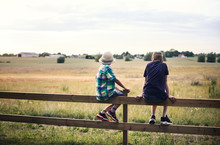 Boys Sitting On Fence In Front Of Pasture