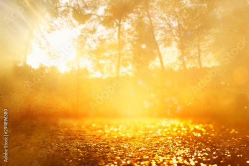 Poster Melon concept background photo of light burst among trees and glitter golden bokeh sparkles