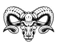 Monochrome Serious Ram Head