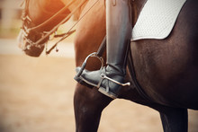 The Foot Of The Rider, Sitting On A Bay Horse, Is Dressed In A Black Leather Boot With A Spur, Which Is Inserted Into The Stirrup
