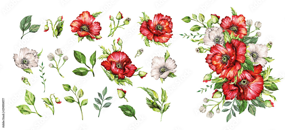 Set of watercolor elements red poppies