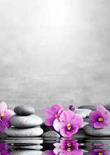 Flower And Stone Zen Spa On Gr...