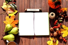 Autumn Composition: Autumn Fruits And Leaves. Notepad - Copy Space.