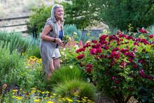 Smiling Senior Woman Standing In Her Garden