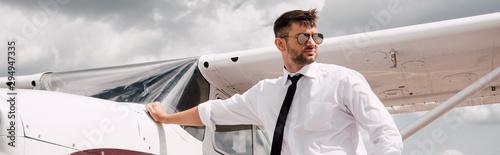 Fotografie, Tablou panoramic shot of confident pilot in sunglasses standing near plane
