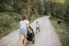 Mother With Daughter, Stroller And Dog Walking On Forest Path