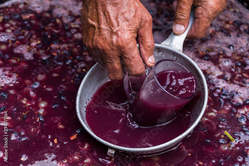 Fototapeta Winemaker's hand with a glass mug, picking up juice from grape must