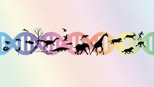 Evolution Abstract Illustration Vector Design.
