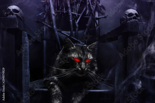 Obraz na plátně Horror possessed evil cat on witch throne made of branches.